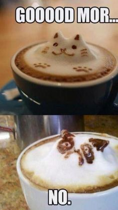 Good Morning coffee cat. Ha ha ha. The grumpy cat is hilarious. Loving this. A lot. I want the same. Seriously. Even if the answer is no. I want the same.