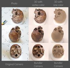 Skull scanned with PPT GUI + MeshLab. Comparisson Real vs. 3D (with and without vertex color).