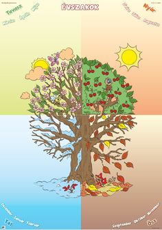 4.b osztály oldala Diagram, Teaching, Map, World, Plants, Seasons Of The Year, Location Map, Education, Maps