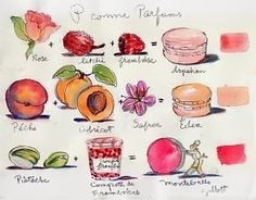 Macaron note cards, Sara Midda