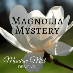 Welcome to the Magnolia Mystery Quilt page!  The Magnolia Mystery Quilt is my 4th mystery quilt.  I hope you decide to join in!     Th...