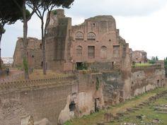 De oudste bewoning vind je op de heuvel Palatijn (ons woord paleis is hiervan afgeleid). Vanaf de negende eeuw v.C tot vele eeuwen n.C. woonden hier de Romeinen.
