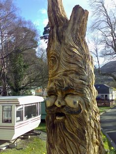 tree faces | ... Rourke – Tree Carving Ltd » Blog Archive » Wood Spirit back face