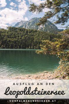 Der perfekte Ausflugstipp für die Steiermark: Der Leopoldsteinersee, ein traumhafter Bergsee in der Steiermark. Ich habe mich auf die Suche nach einem See begeben, der nicht weit von Niederösterreich entfernt ist. Der Leopoldsteinersee ist perfekt für einen Ausflug im Sommer, denn du kannst dort sogar baden. Wie du dort hinkommst und warum ein Besuch lohnenswert ist, erfährst du in meinem Artikel! :) Camping, Bergen, Road Trip, River, Inspiration, Outdoor, Road Trip Destinations, Hiking, Search