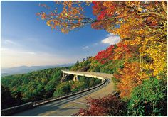 Skyline Drive in the Blue Ridge Mountains ~ Virginia ~ Google Image Result for http://www.cozymountaincabin.net/images/BlueridgePkwy_200dpi.jpg