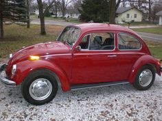 1970 red volkswagen beetle - This was our family car. No seat belts!