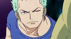 "okami-fr: """"That's quite a lot!"" - Roronoa Zoro """