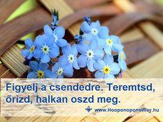 Hálát adok a mai napért. A béke lehetséges. Csak eddig rossz helyen kerested. Ott lakik benned. Ha megtalálod, az a legnagyobb csendben történik. Nem fogják bemondani a hírekben, nem fogja közvetíteni a híradó sem. Ezért figyelj a csendedre. Teremtsd, őrizd, halkan oszd meg. Köszönöm. Szeretlek ❤ ⚜ Ho'oponoponoWay Magyarország Flowers, Plants, Plant, Royal Icing Flowers, Flower, Florals, Floral, Planets, Blossoms