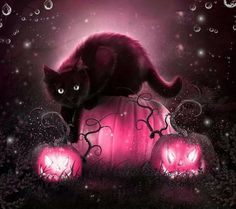 Black cat #witch #familiar #pagan
