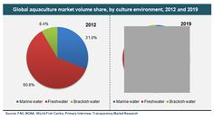 Aquaculture (Marine Water, Freshwater and Brackish Water) Market for Carp, Molluscs, Crustaceans, Salmon, Trout and Other Fishes - Global Industry Analysis, Size, Share, Growth, Trends and Forecast, 2013 - 2019 - See more at: http://www.transparencymarketresearch.com/aquaculture-market.html#sthash.xDbNG7CP.dpuf