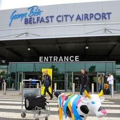 CowParadeNI arrive at Belfast City Airport #houseofireland