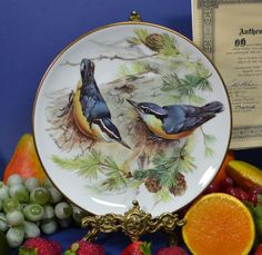 TIRSCHENREUTH Porcelain URSULA BAND Songbirds CABINET PLATE - CORSICAN NUTHATCH