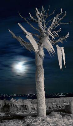 """Image tirée d'une série de photos de nuit prise au mois de janvier 2005 lors d'une période de """"bise glaciale"""". L'ambiance apportée par ces sculptures  de glace naturelles éclairée par la lune avait quelque chose de vraiment spectaculaire."""