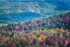 Amazing view from Cherohala Skyway by Emma McCarty on Facebook