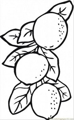 Lemon Coloring Page - AZ Coloring Pages Fruit Coloring Pages, Cartoon Coloring Pages, Coloring Book Pages, Coloring Sheets, Lemon Skin Lightener, Lemon Pictures, Coloring Pages For Teenagers, At Home Hair Color, Lighten Skin