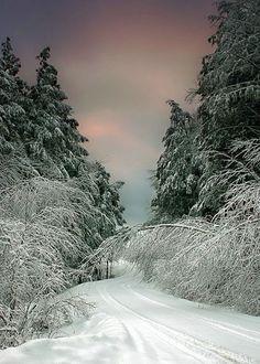 Snow Road, Vermont