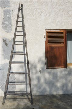 French Apple Picker's Ladder