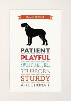 Dogue de Bordeaux Dog Breed Traits Print by WellBredDesign on Etsy Clumber Spaniel, Spaniel Dog, Springer Spaniel, Spaniels, Phteven Dog, Labrador Dog Breed, Mountain Dog Breeds, Italian Spinone, Bordeaux Dog