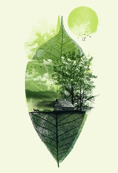Live in Nature: green graphic design by Illustrations, Illustration Art, Plakat Design, Photoshop, Leaf Art, Graphic Design Inspiration, Graphic Design Projects, Modern Graphic Design, Tattoo Inspiration