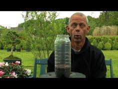 Mini Gewächshaus selber bauen und Pflanzen ganz einfach vermehren - YouTube
