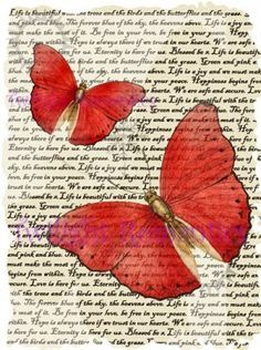 This is a beautiful butterfly illustration that has been enlarged and placed onto vintage style text. 8 and professionally printe Decoupage Vintage, Decoupage Paper, Vintage Diy, Vintage Paper, Vintage Images, Shabby Vintage, Vintage Style, Vintage Inspired, Red Butterfly