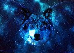 Space Wolf Metal Poster by Scar Design. #metalprints #displate #space #wolf #wolves #galaxy #universe #wolfspirit #animals #animal #metalposter #homedecor #decoration #wallart Gaming Posters, Cool Posters, Wolf Spirit, Spirit Animal, Wolf Poster, Space Wolves, Modern Art Prints, Family Gifts, Print Artist