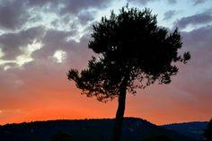 Posta de Sol, Plana de les Torres, Torrelles de Foix.