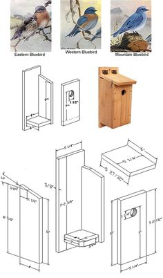 1000 Images About Bird Houses On Pinterest Bird House