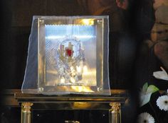 """Eucharistic Miracle of Sokolka (Sokółce) 2008: A consecrated host was accidentally dropped on the floor by the priest who was distributing Holy Communion to the faithful. The consecrated host was then carefully placed in water in order to allow it to dissolve. However, several days later a nun discovered that the host remained undissolved, she noticed a distinctive red mark on it. According to an Associated Press report, """"Two medical doctors determined that the spot was heart muscle tissue.. Heart Muscle, Muscle Tissue, Blessed Virgin Mary, Priest, Communion, Catholic, Religion, Prayers, Faith"""