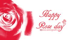 Happy Rose Day 2015 High Quality Images - http://wallucky.com/happy-rose-day-2015-high-quality-images/