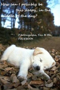 Life with #Fibromyalgia
