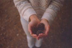 zenit: è amore | Flickr by Stefania Gambella