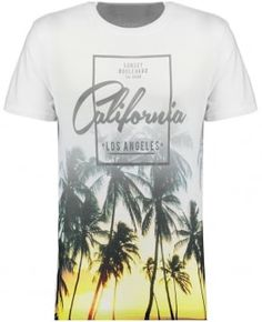 Mens Grey Sunset Boulevard California Palm T-shirt