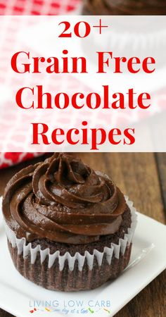 20+  Grain Free Chocolate Recipes   #glutenfree #lowcarb Most of them #dairyfree and #paleo