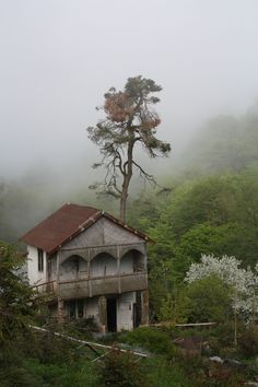 House in Batumi