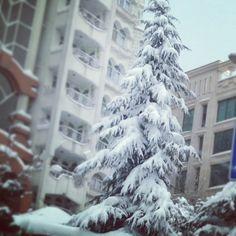Tehran, snow....