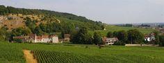 Vue sur le village de Chambolle-Musigny depuis le climat classé en village de la même commune Les Échézeaux.  Photo de Dominique Guillon  Classé dans:Chambolle-Musigny Tagged: AOC Bourgogne Chambolle-Musigny Climats Les Echezeaux vigne Village vin