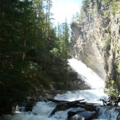 Bumblee Bee Falls, north fork Couer D' Alene river i will see you in four years idaho! cant wait to make our forever home there!