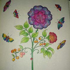 Flored livro de colorir, Johanna Basford, jardim secreto e floresta encantada