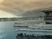 Gray Docks
