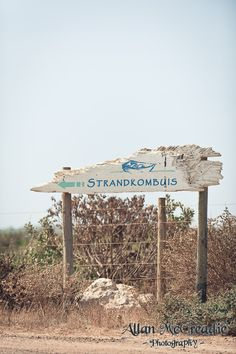 Amy & Jonathans Wedding at Strandkombuis Yzerfontein - Allan McCreadie - Wedding Photographer - Cape Town Cape Town, Gazebo, Amy, Wedding Venues, Outdoor Structures, Patio, Landscape, Beach, Outdoor Decor
