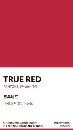 Pantone Red, Pantone Colour Palettes, Pantone Color, Hex Color Palette, Colour Schemes, Color Patterns, Red Color Background, Colour Board, True Red