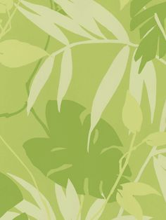 Interior Place - Kiwi Tropical Leaves Wallpaper, $43.08 (http://www.interiorplace.com/kiwi-tropical-leaves-wallpaper/)