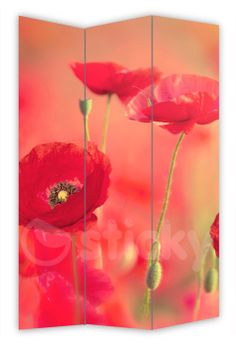 Folding Screen RED POPPIES by Sticky!!!