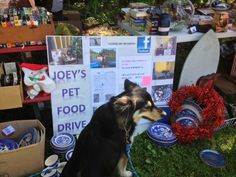 Flea Market here today, Sunday 7/7/13. We have a flea market here the first Sunday of every month during warm weather. Bring your dog! Bring a dog food donation for our local animal shelters. Scranberry Coop loves animals :)