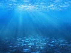 Resultado de imagen de fondos marinos