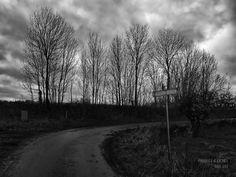 DAG 351: SLUISPOLDERDIJK #P412365 #zeeuw_the_series #polderfotografie #polderphotography #holland