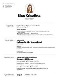 önéletrajz minta profession A(z) 76 legjobb kép a(z) CV táblán | Cv template, Resume Design és  önéletrajz minta profession