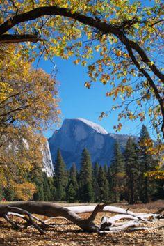 Half Dome Yosemite  Artist: Alex Cassels