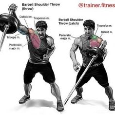 shoulder exercises with burbell